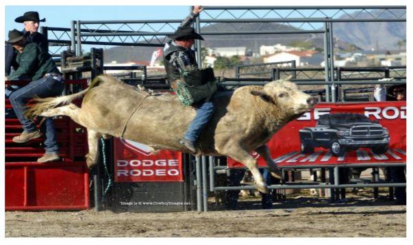 Dick Berg Rodeo
